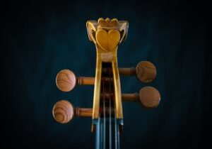 The Galway Cello made by the extremly talented Kuros Torkzadeh © Anita Murphy 2021